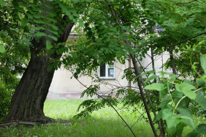 dom Piłsudski podwórze 2