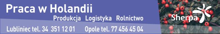 Baner 720 110