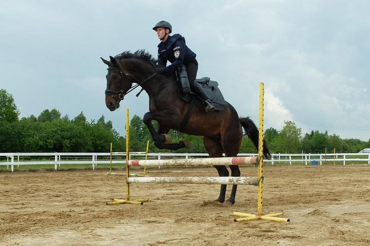 Konie na służbie