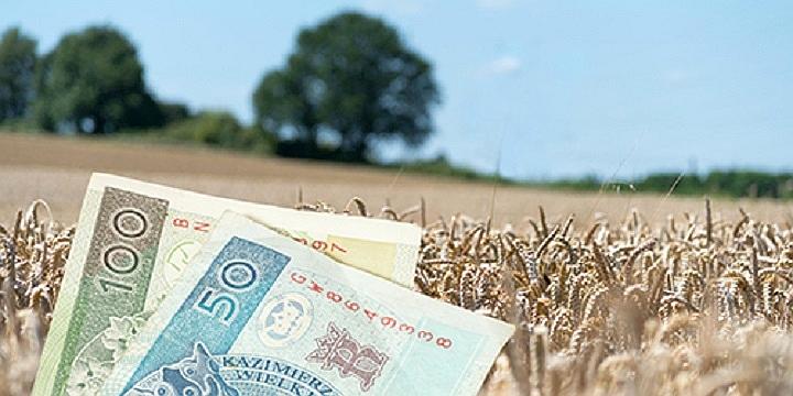 10 lipca ostatnim dniem na złożenie wniosku o dopłaty bezpośrednie